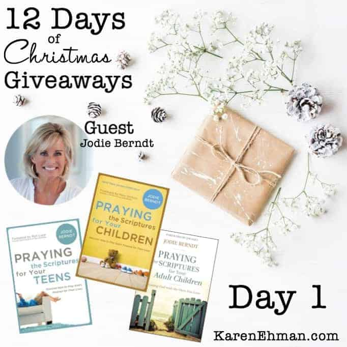 10th Annual 12 Days of Christmas Giveaways (2017) at karenehman.com.