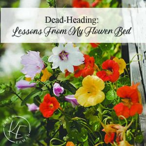 Dead-Heading: Lessons from my flower bed plus free download at karenehman.com.